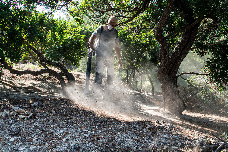 Chios Mastiha Tables Sweeping